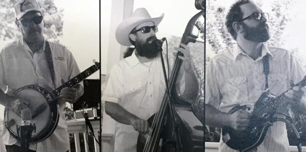 folkstone string band